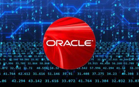 Oracle Apex development companies