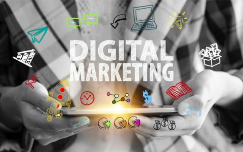 Digital Marketing Companies in Chandigarh
